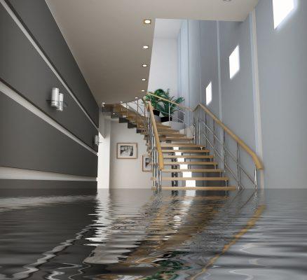 שימוש בבטון בפרויקטים אדריכליים